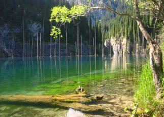 Hồ Kaindy: Kỳ lạ nơi rừng cây mọc ngược ngay từ lòng hồ